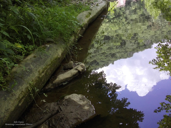 critteroverlook_jazeyzus_armstrongcd-copy
