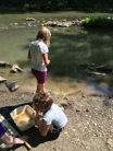 "Campers collect crayfish in the stream and study them in their ""crayfish sanctuary"" at Crooked Creek ELC's Young Naturalist Camp"